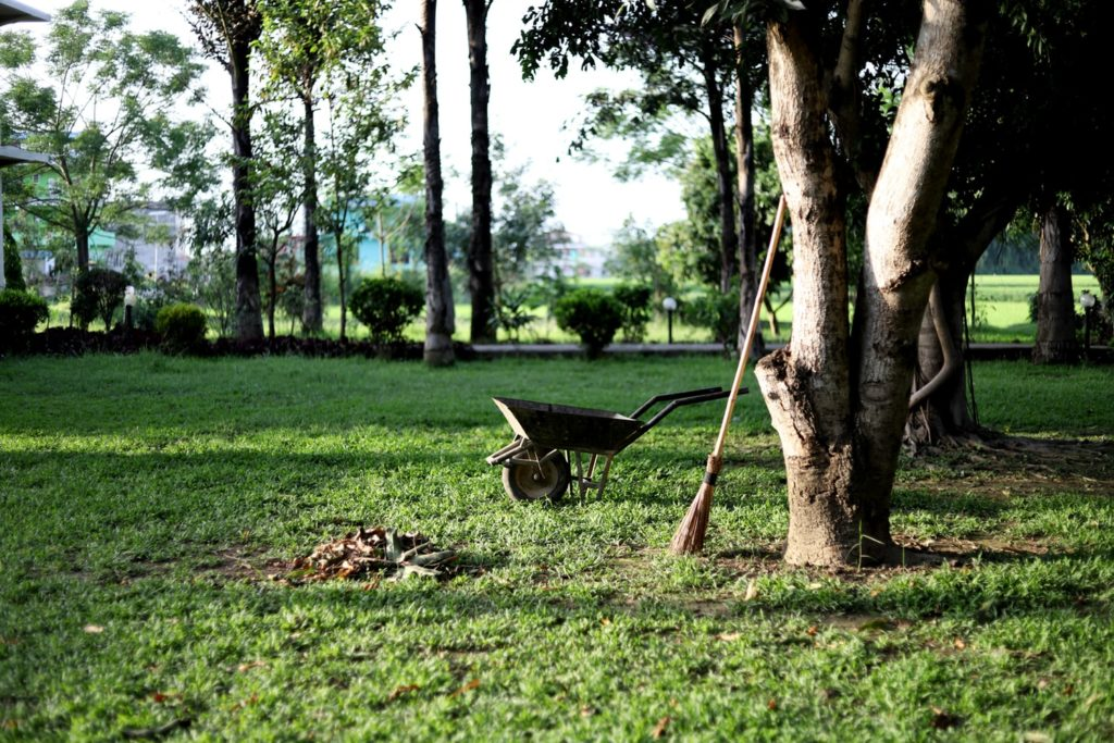 désherber-son-jardin