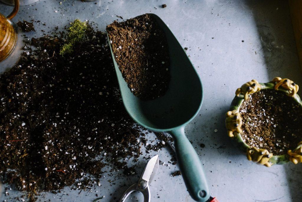 jardinage-pots-des-sols-scoop